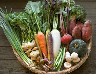 日本の農業を救う方法
