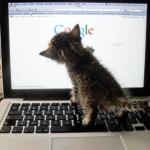 これは便利!Googleの素敵なサービス15選