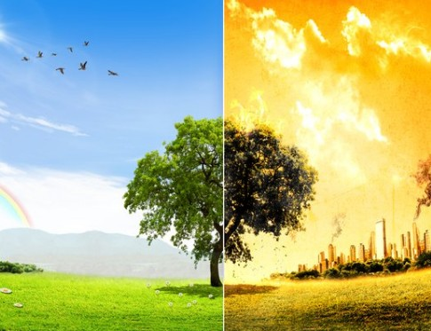 人類滅亡後の地球