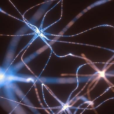 神経シナプスのイメージ