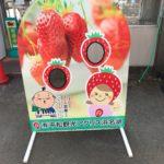 """<span class=""""title"""">愛知県からイチゴ狩りに行くのなら、ここはいかが?</span>"""