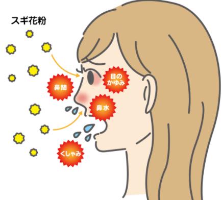 花粉症で肌荒れ?